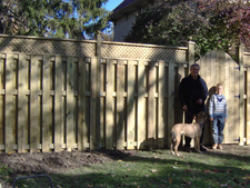 """Invisible Fence"" vs. Chain Link vs. Wood Fence for Dogs or Cats"